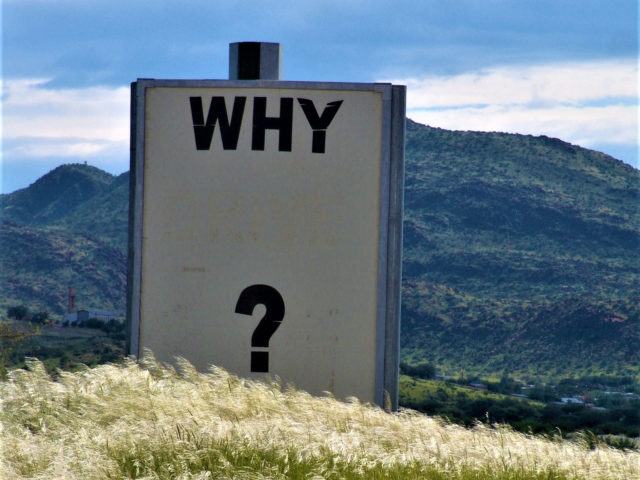 Most Common Survey Questions